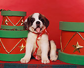 PUP 13 RK0001 03