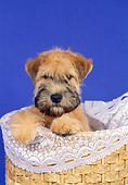 PUP 14 FA0033 01