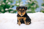 PUP 14 PE0004 01