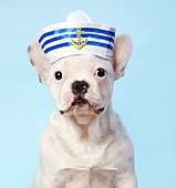 PUP 14 XA0022 01