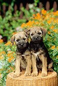 PUP 14 CE0002 01