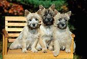 PUP 14 CE0004 01