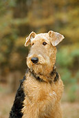 PUP 14 CE0006 01