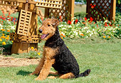 PUP 14 CE0010 01