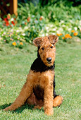 PUP 14 CE0011 01