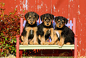 PUP 14 CE0018 01