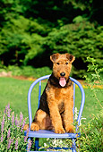 PUP 14 CE0019 01