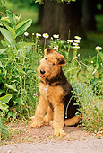 PUP 14 CE0020 01