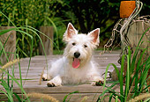 PUP 14 CE0039 01