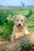 PUP 14 CE0044 01