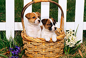 PUP 14 CE0045 01