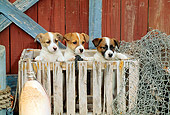 PUP 14 CE0046 01