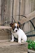 PUP 14 CE0047 01