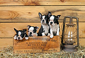 PUP 14 CE0062 01