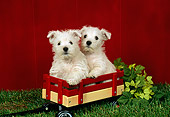 PUP 14 FA0025 01