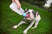 PUP 14 MQ0001 01