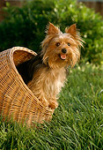 PUP 14 RC0002 01