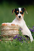 PUP 14 SS0007 01