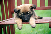 PUP 15 GR0023 01