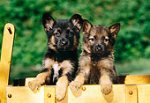 PUP 15 RK0061 04