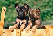 PUP 15 RK0061 06