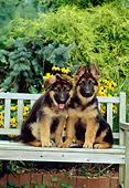 PUP 15 CE0003 01
