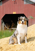 PUP 15 CE0030 01