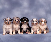 PUP 15 RK0021 03