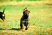 PUP 15 RK0054 02