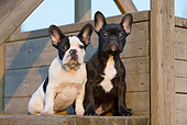 PUP 18 CB0027 01