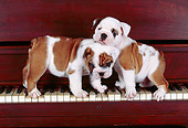 PUP 18 RK0023 09
