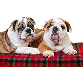 PUP 18 RK0132 02
