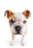 PUP 18 RK0206 60