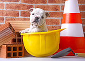 PUP 18 XA0002 01