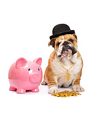 PUP 18 XA0021 01