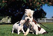 PUP 18 RK0021 05