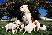 PUP 18 RK0021 07