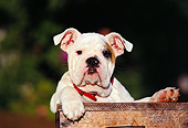 PUP 18 RK0044 04