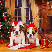 PUP 18 RS0076 01