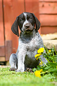 PUP 19 NR0001 01