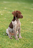 PUP 19 RC0001 01