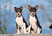 PUP 21 CB0024 01