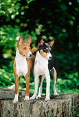 PUP 21 CE0001 01