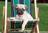 PUP 23 CE0016 01