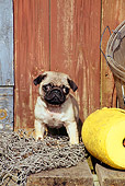 PUP 23 CE0005 01
