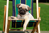 PUP 23 CE0014 01