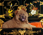 PUP 25 RK0002 05