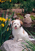 PUP 27 CE0070 01
