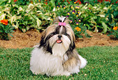 PUP 27 CE0058 01