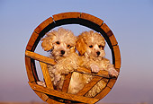PUP 27 RK0013 03